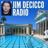 Jim DeCicco | Wealth and Abundance Success Podcast: Online Entrepreneur | e-books | Seminars | Coach