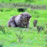 Wombat Radio