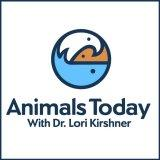 Animals Today Radio
