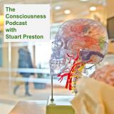 The Consciousness Podcast