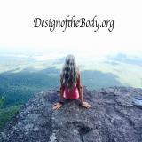 Design of the Body