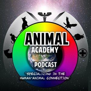Animal Academy Podcast