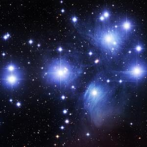 The Pleiadian Network