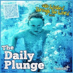 The Daily Plunge