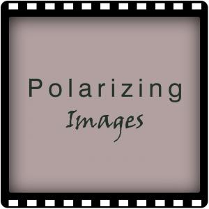 Polarizing Images