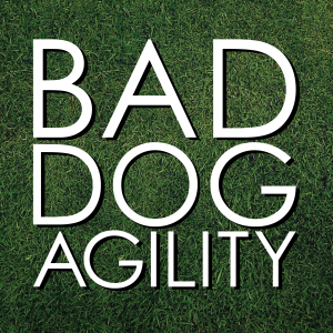 Bad Dog Agility Podcast