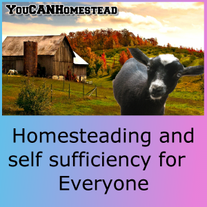 You CAN Homestead