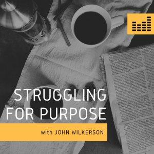Struggling for Purpose