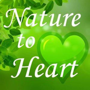 Nature to Heart - connect to the living world
