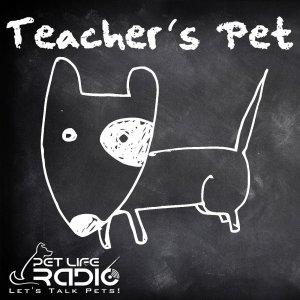 Teacher's Pet Podcast - Training Pets & Pet Obedience  - Pets & Animals on Pet Life Radio (PetLifeRa