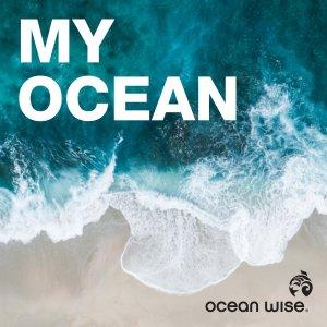 Ocean.org