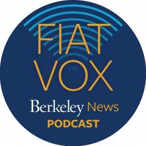 Fiat Vox