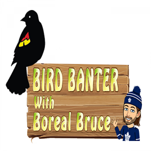 Bird Banter with Boreal Bruce