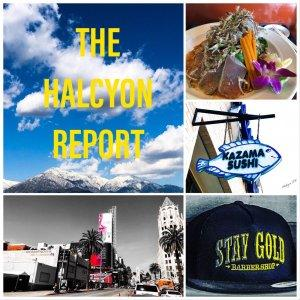 The Halcyon Report