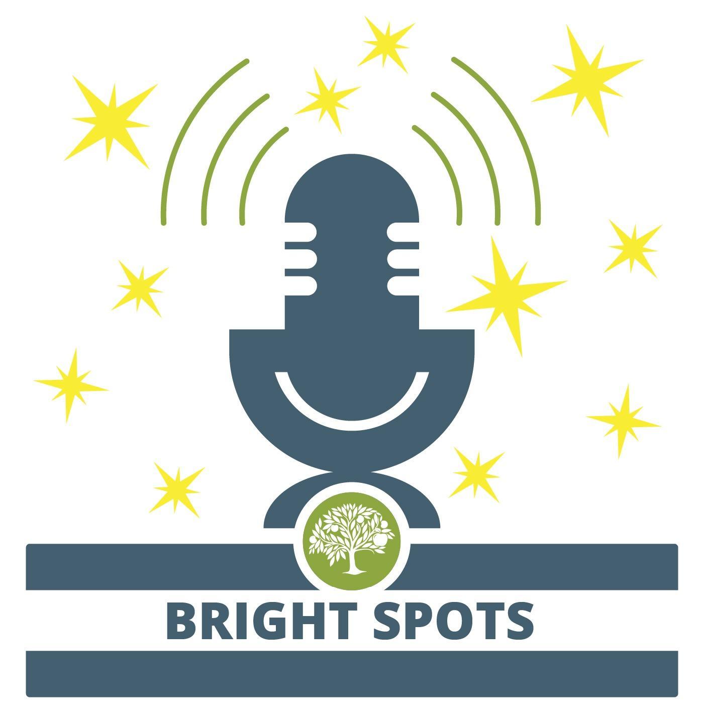 Bright Spots in Education