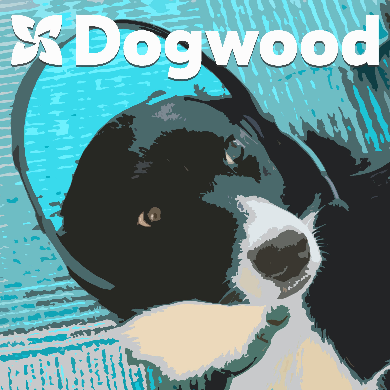 The DogwoodPodcast
