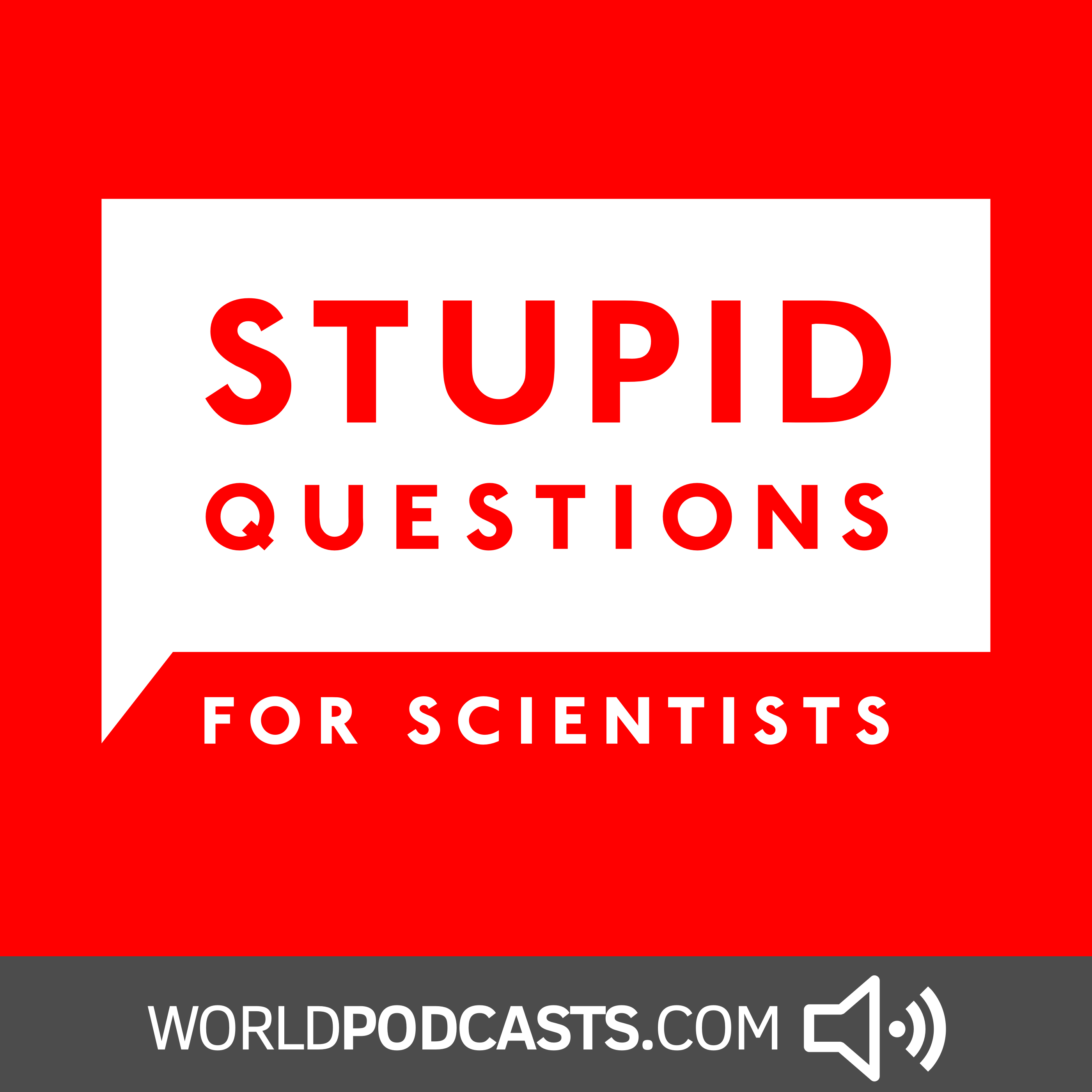 Stupid Questions for Scientists